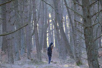 Alleen in het bos / Alone in the forest von Leinsview C