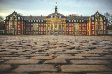 Schloss Münster von Friedhelm Peters