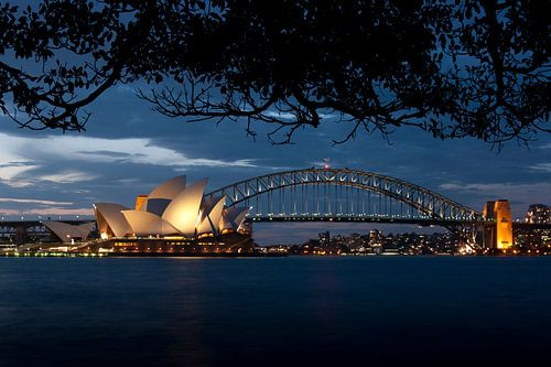 Sydney van