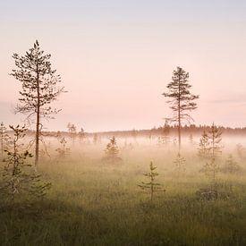 Swedish Lapland - Haparanda field van Claire Droppert