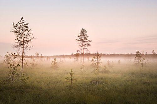 Swedish Lapland - Haparanda field van