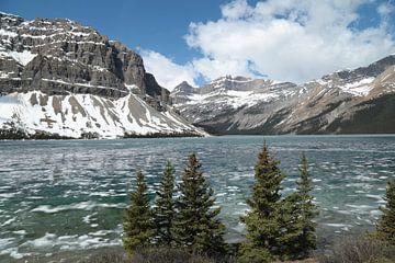 Winters uitzicht op Bow Lake van Carin van der Aa