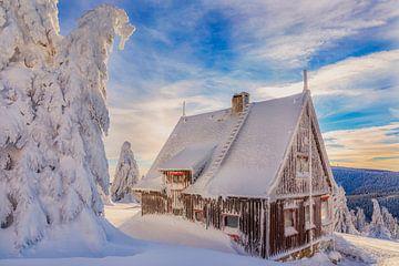 Hütte im Winterland von Daniela Beyer
