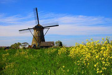 Windmühle von Fikri calkin