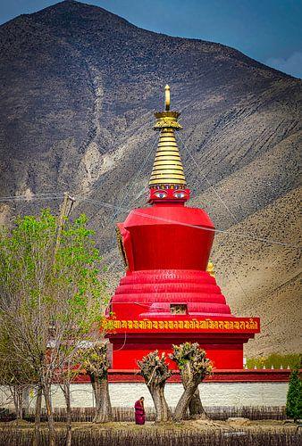Monnik wandelt in de tuin voor de stoepa, Tibet