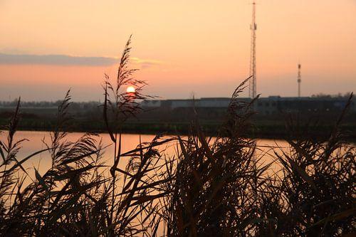 Zonsondergang als kleurrijk patroon op de Rotte bij de molenviergang