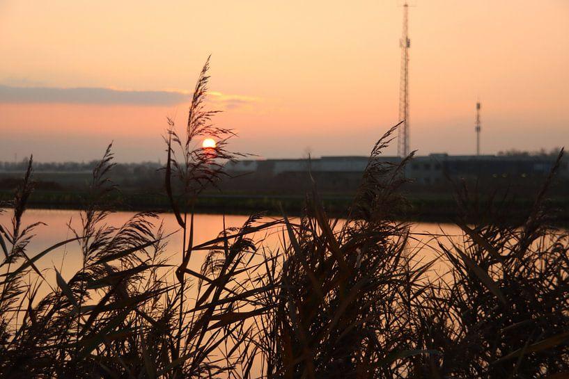 Sonnenuntergang als farbenfrohes Muster auf der Rotte an der Mühle Vier-Gang von André Muller