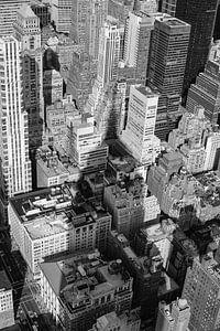In de schaduw van de Empire State building van eric borghs