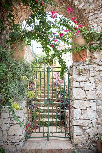 Fine art foto van bloemrijke poort op Capri, Italië