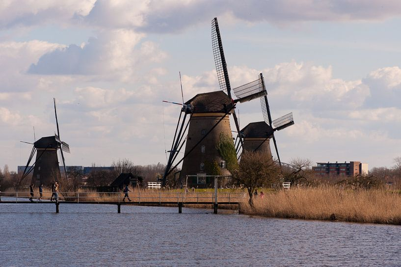 Windmills van Brian Morgan