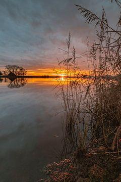 Sonnenaufgang am Bach von Wesley Kole