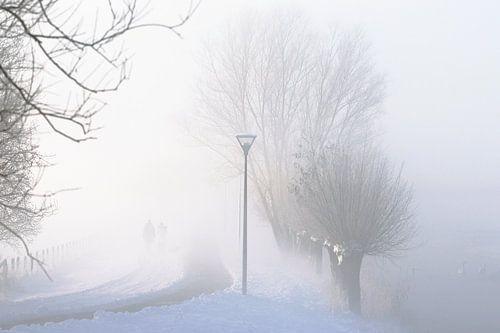 landschap in de mist en sneeuw