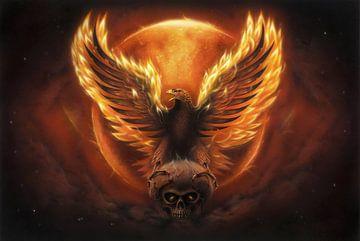 Phoenix Adler von Rainer Kalwitz