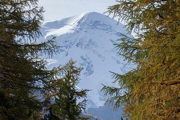 Zermatt : Breithorn von Torsten Krüger