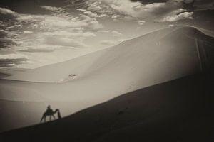 Sahara  von Paul Piebinga