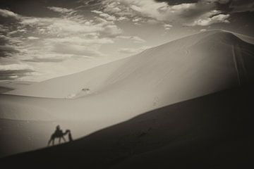 Sahara  sur Paul Piebinga