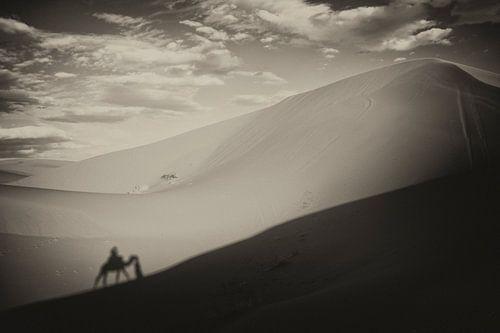 Sahara  van