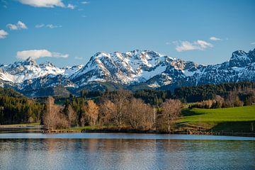 een wijds uitzicht over de Schwaltenweiher tot aan de Allgäuer bergen van Leo Schindzielorz