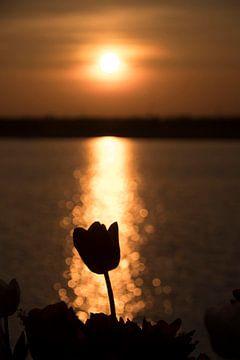 Sonnenuntergang von Tosca Dekker - Fleury