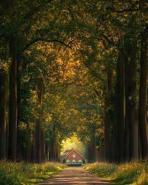 A fairytale house van