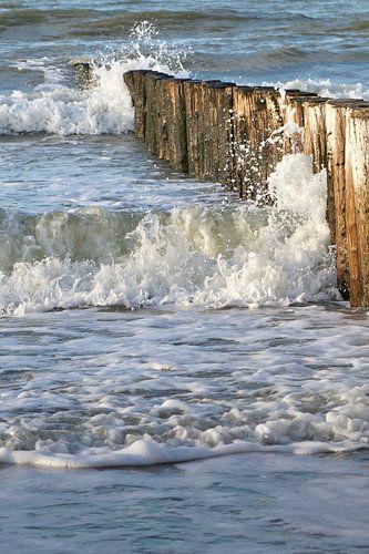 strand met houten golbreker palen