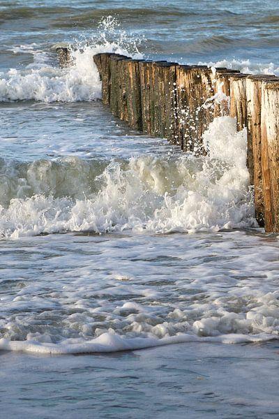 strand met houten golbreker palen van Arnoud Kunst