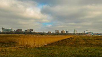 skyline van 's-Hertogenbosch van Freddie de Roeck