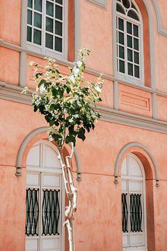 Façade rose de l'Espagne, l'Europe avec un mur vert au premier plan sur AIM52 Shop