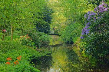 Arboretum Trompenburg van Michel van Kooten
