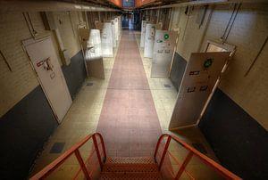 Open gevangenisdeuren