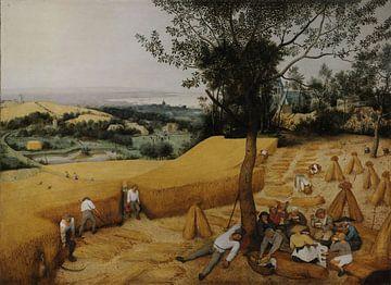 De Oogsters van Pieter Brueghel de Oude van