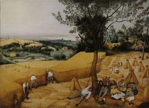 De Oogsters van Pieter Brueghel de Oude