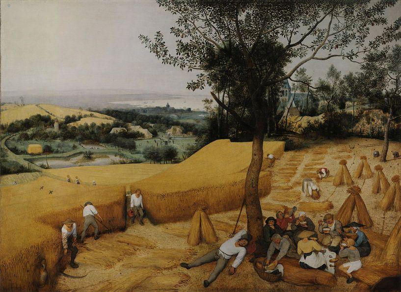 Die Kornernte (Hochsommer), Pieter Brueghel der Ältere von Rebel Ontwerp