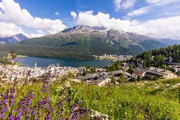 Lente in St. Moritz in Zwitserland van Werner Dieterich