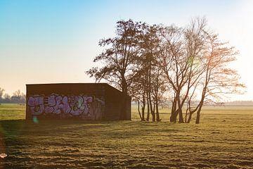 Schuur op het weiland van thomas van der Wijngaard