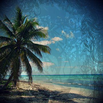 Caribbean Blue - Karibikblau