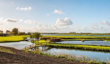 Réserve naturelle Het Gors près de Nieuw-Beijerland sur Ruud Morijn