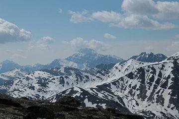 Canadese bergen bij Jasper (Alberta) van Carin van der Aa