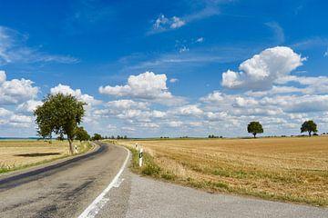 platteland von Fay Kallendorf