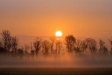 Mistige zonsopkomst bij Wier van Goffe Jensma
