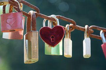 Liefdes hangsloten in verschillende kleuren aan een roestige ketting op een zonnige dag van Evelien Doosje