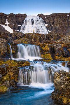 Dynjandi Wasserfall von Denis Feiner