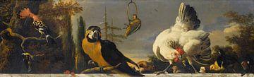 Vögel auf einer Balustrade - Melchior d'Hondecoeter von