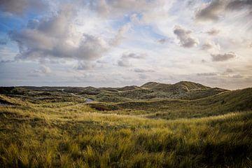 Typische niederländische Dünenlandschaft von Frank van Hulst