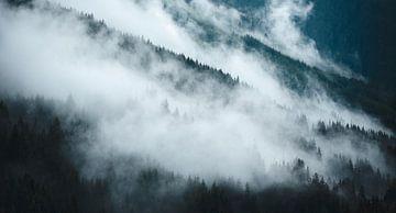 Alpiner Nebel 5 von Bart Rondeel
