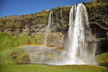 Seljalandsfoss met een regenboog van Elisa Hanssen