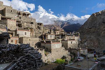 Narrendorf im Himalaya Nepal von Tessa Louwerens