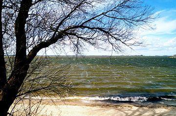 Zee uitzicht vanaf het strand von Esther Tonnaer