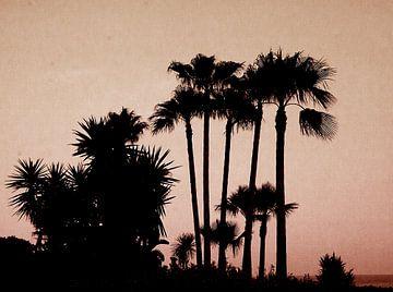 palmtrees red von Nienke Stegeman