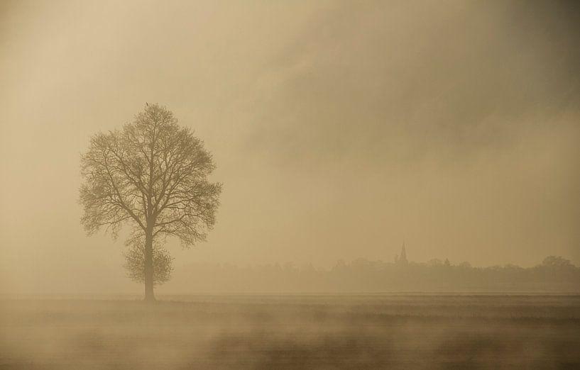 Mist van Guus Jamin